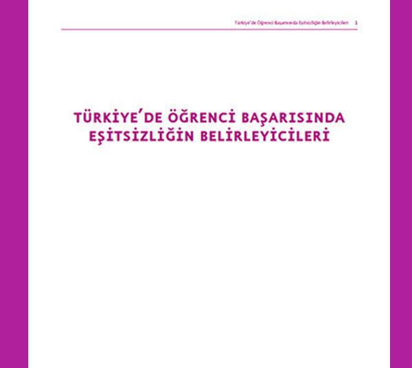 Türkiye'de Öğrenci Başarısında Eşitsizliğin Belirleyicileri